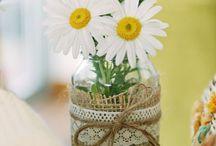 Ideen mit Margeriten / Die Wiesenschönheit schmückt nicht nur Blumenkübel, Gartenbeete oder Balkonkästen, sondern macht sich auch auf dem Tisch ganz hervorragend. Ob hübscher Blumenstrauß oder zarter Eyecatcher – mit Margeriten lassen sich schöne Deko-Ideen zaubern, die den Sommer nach Hause holen