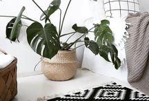 Interior Design | Decoration