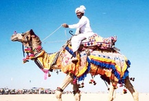 The Artistic Rajasthan ...
