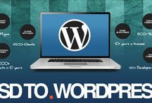 Wordpress Conversion Service