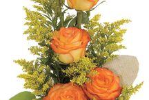 obľúbené kvetinky