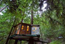 Tiny Treehouses / Tiny and small tree houses, all over the world.