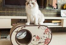 Cardboard Cat scratcher cat lounge cat toy cat bed cat house