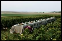 Dream Wedding Garden in Poggio Diavolino / Ideas