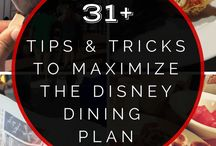 Disney World tips and must-dos / Tips, advice and must-dos for Disney World in Orlando Florida