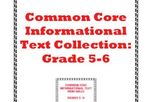 Reading - information text