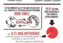 Info: biology