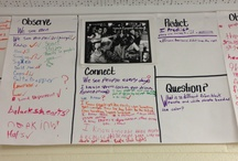 Fifth Grade Social Studies