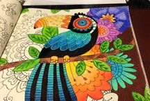 Colouring images