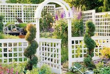 Garden Ideas / by Paula Baker