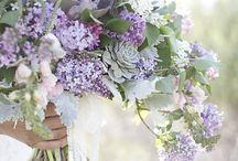 Color Inspo:  Lilac