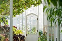 Greenhouse, conservatory, in&out-around