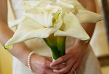CCBC White Lilly Wedding