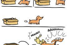 Série cachorrinho FOFO