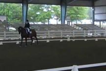 Dressage Show Results / These are the videos from shows that my riders are competing in.