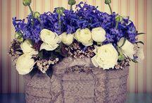 Pazartesi / Haftanın ilk iş günü için onu mutlu etmek senin elinde  Yeni ve farklı tasarımlarıyla yakında www.escicek.com'da #escicekcom #tasarım #yeniş #mutluluk #pazartesi #çiçekler #esçiçek #yakında