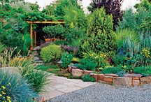 GHGRE Summer of Color / Sunny summer inspiration for home and garden