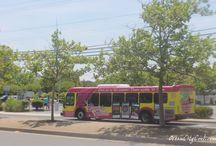 Transportation Around Ocean City MD / Play it safe while in and around Ocean City Maryland, there are lots of cool transportation options; the Beach Bus, Shuttle Services, Limousines and Taxi Cabs, and more.  We will share with you what's available, and feel free to share with us anything we may have missed...  #BeachBus #ocmd