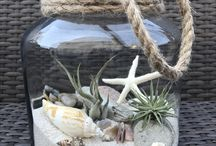 Seashell art