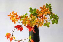 ikebana et bouquets