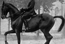 Equestrian / History in riding