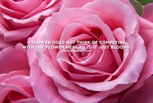 Blooming Quotes / Because flowers can't fix everything, but they're a great start. Put a smile on your face with uplifting, motivational quotes that also center around your favorite thing: flowers!