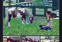 hevoset s3