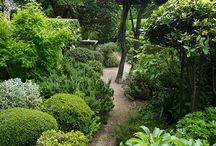 Provence gardens / Nicole de Vestian