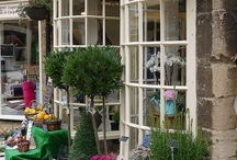 Flower Shops / by Brittany DeWidt