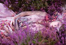 Paint, Pigment, Blush and Bloom / les couleurs