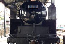 日本国有鉄道 C59 1号 / 東海道、山陽本線の主力機関車として誕生。 昭和31年に門司に配属され、寝台特急「あさかぜ」を始め、急行「雲仙」などに使用され、昭和37年には、熊本に転属。 この年に誕生した熊本初の特急「みずほ」も牽引しています。