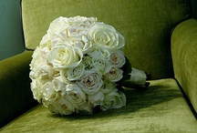 Bouquet Ideas / by Breanna Hutchings