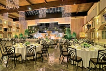 Let's Meet & Socialize / A Spotlight on Our Distinctive Banquet & Meeting Spaces.  Remember - if it's worth celebrating, it's worth celebrating at the Eden Resort & Suites!