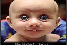 funny photo's