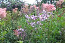 Droomtuinen / Dit zijn de tuinen die mij inspireren