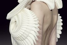 fashion.::::