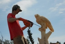 CHAINSAW ART / by Shirley Comerford