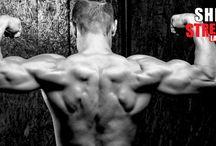 Sheer Strength Blog
