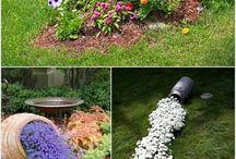 Hagetips og planter