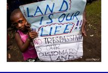 SABL land grab / SABL leases have been used to steal over 5 million hectares of community owned land in Papua New Guinea. A Commission of Inquiry has declared the leases fraudulent but no action has been taken to cancel the contracts or stop illegal logging in the leased forests. Find out more and join the campaign against the leases - www.actnowpng.org/sabl