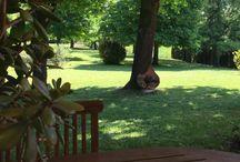 Garden.. open air.