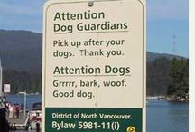 Funny Banners and Signs / Real Life Examples of Banners and Signs