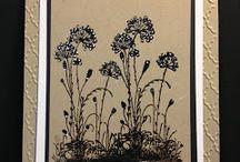 Card Ideas / by Karen Struve