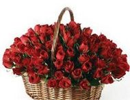Send flowers to Bikaner / Sometimes the only flower that can truly symbolize your sincere feelings with this flower. Sending flowers to your someone special can relay feelings of love, affection, or even friendship depending on the color and the message. http://www.onlinedelivery.in/flowers-delivery-in-bikaner.aspx