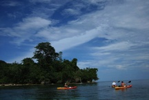 Kayaking Panama / Information regarding kayaking and stand up paddle-boarding in Panama.