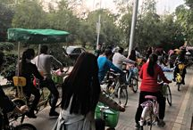 My Own Chinese Brocade Blog