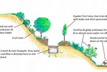 Permaculture : Verger