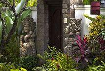 garden for Ubud home