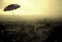 paraguas y quitasoles