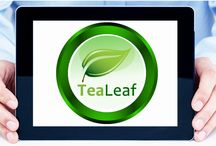 Logo Designs / This we posted different kinds of logo we designs for different clients.
